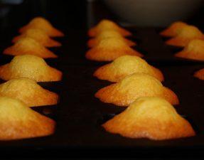 idée dessert les madeleines