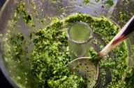 persil-mixe
