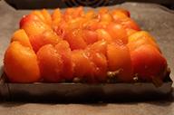 abricot-four